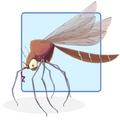 Mosquito_Squeezer