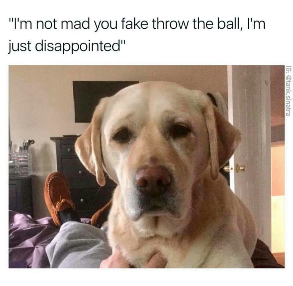 Disappointment - Meme by Markiplite16 :) Memedroid