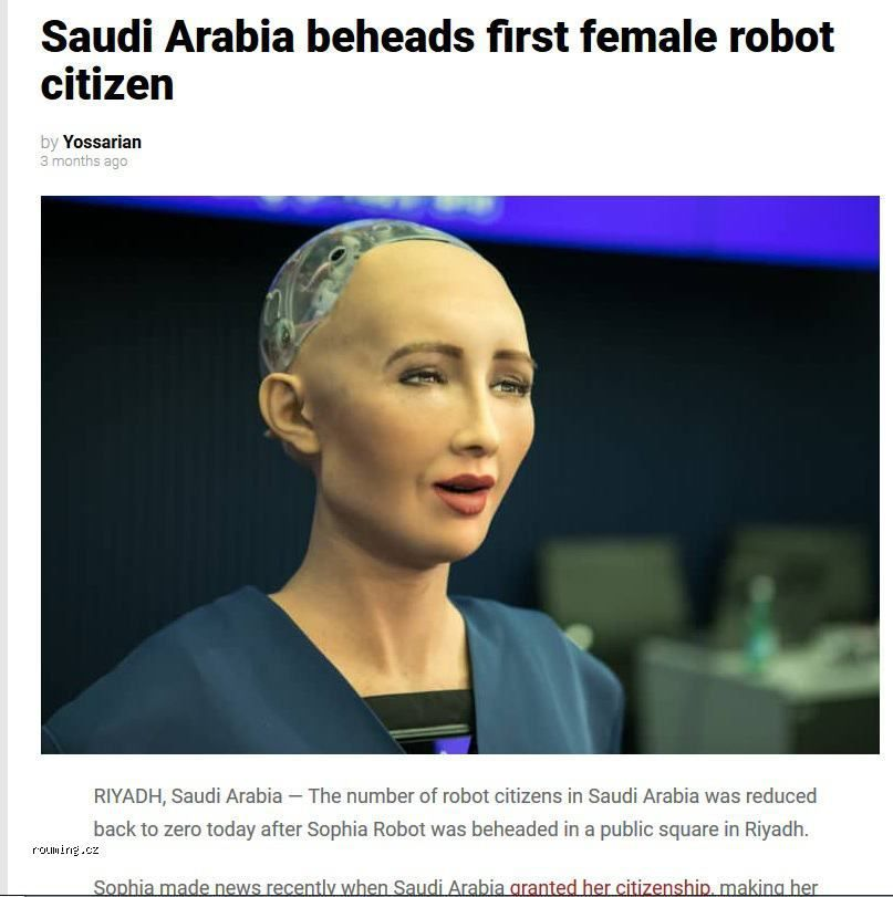 Saudis Launch War Against Skynet Meme By Seekae Memedroid