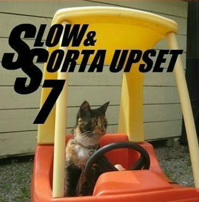 When You Get A Slow Car Meme By Peebee Memedroid