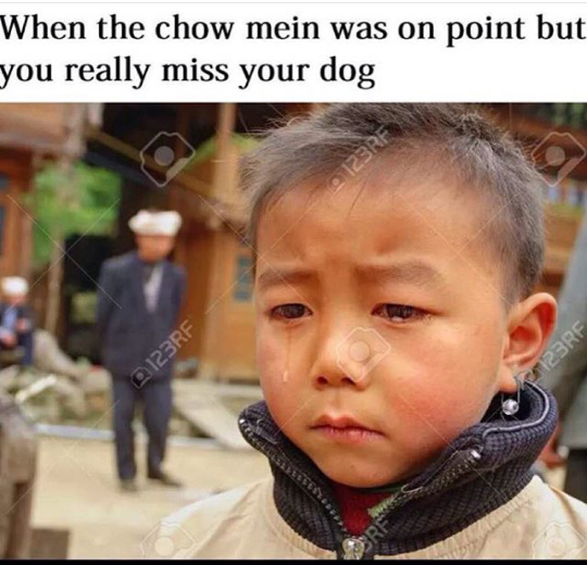 When The Lo Mein Was Good Dog