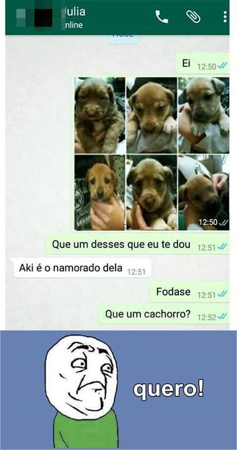Que um cachorro?