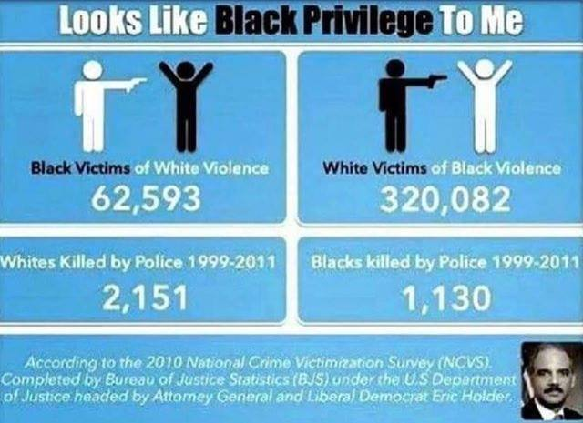 No such thing as white priviledge - meme