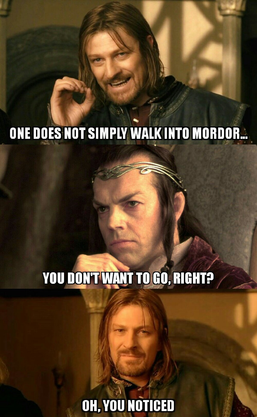 LOTR alternate plot - meme