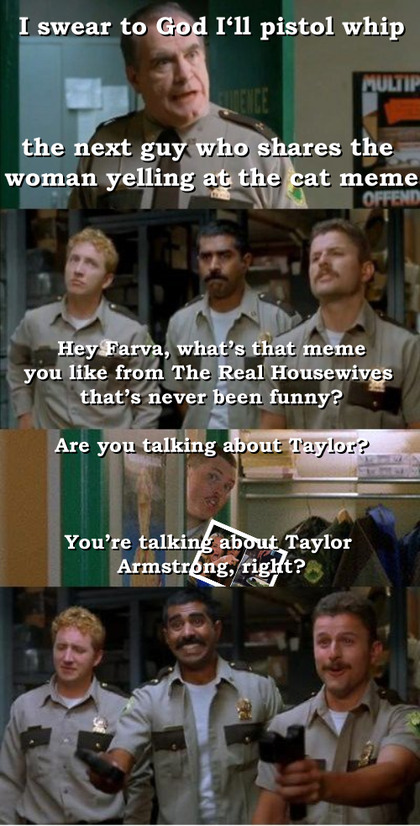 Taylor Housewives Super Troopers - meme