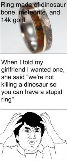 Dinosaur - meme