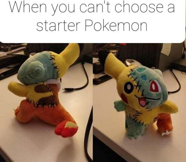 When you can't choose a starter Pokemon - meme