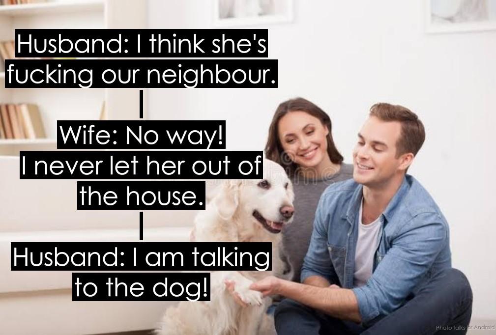 Gotta love dogs - meme