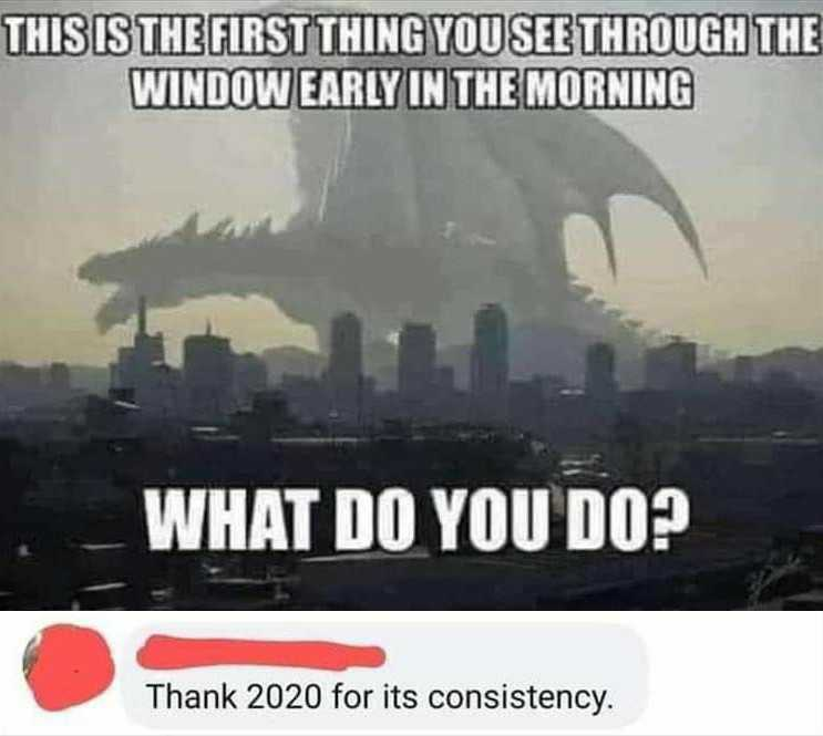 Thank you, 2020 - meme