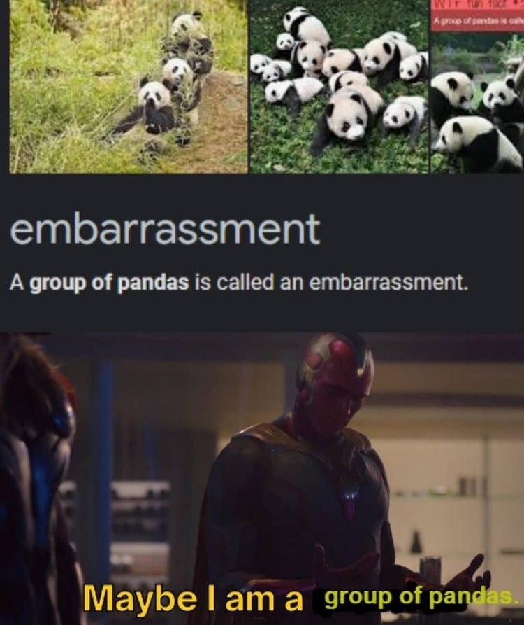 embarrassed - meme