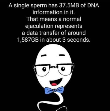 Don't waste your data !! - meme