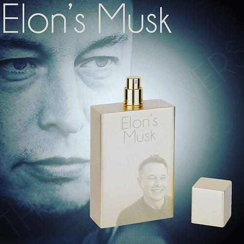 Elon's Musk - meme
