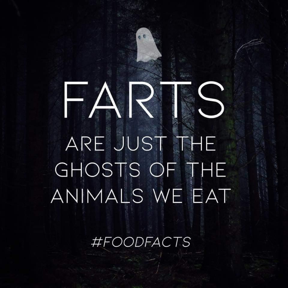 Farts - meme
