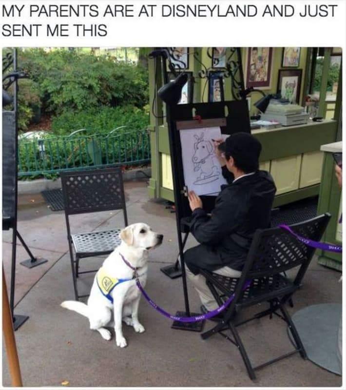 Caricature Doggo - meme