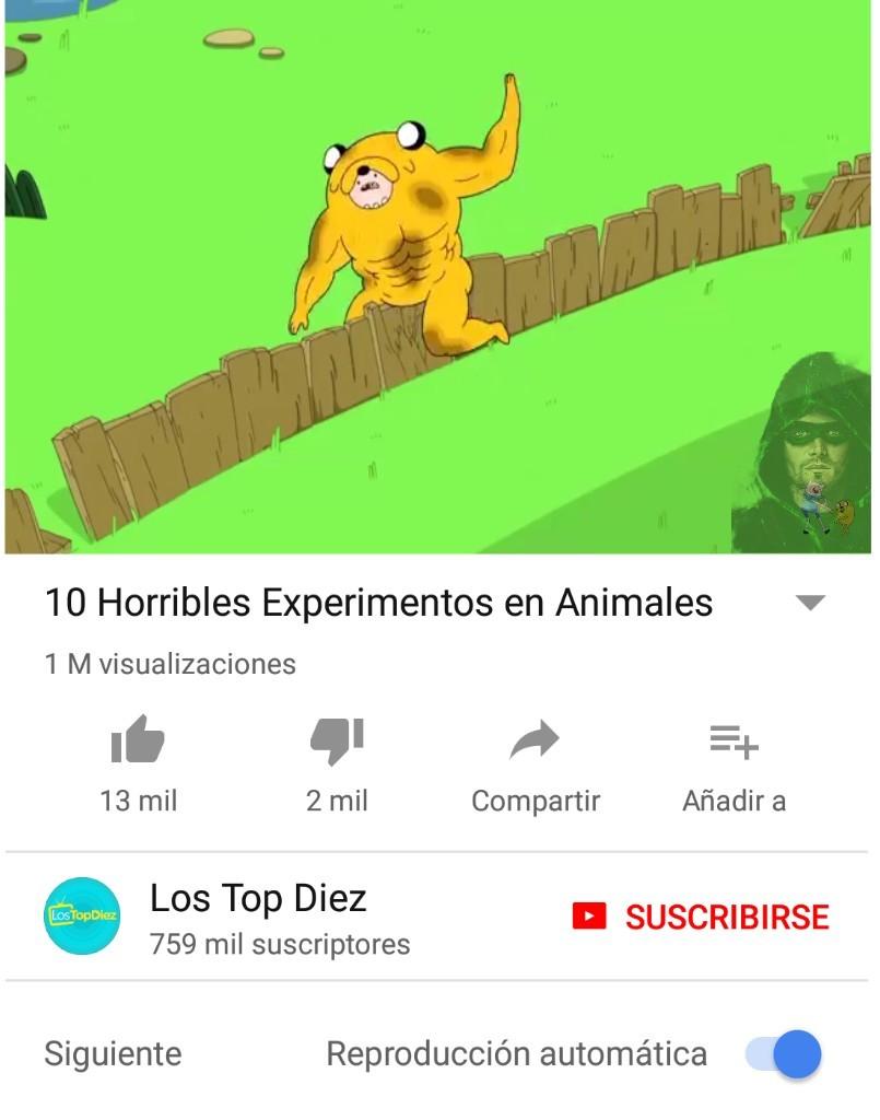 ... XD - meme