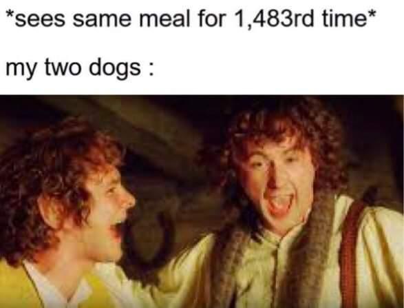 good boys/girls - meme