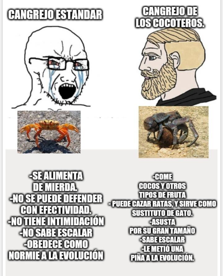 Persona sin casi idea de biología haciendo un meme de biología. Que puede salir mal (aparte del meme claro está)