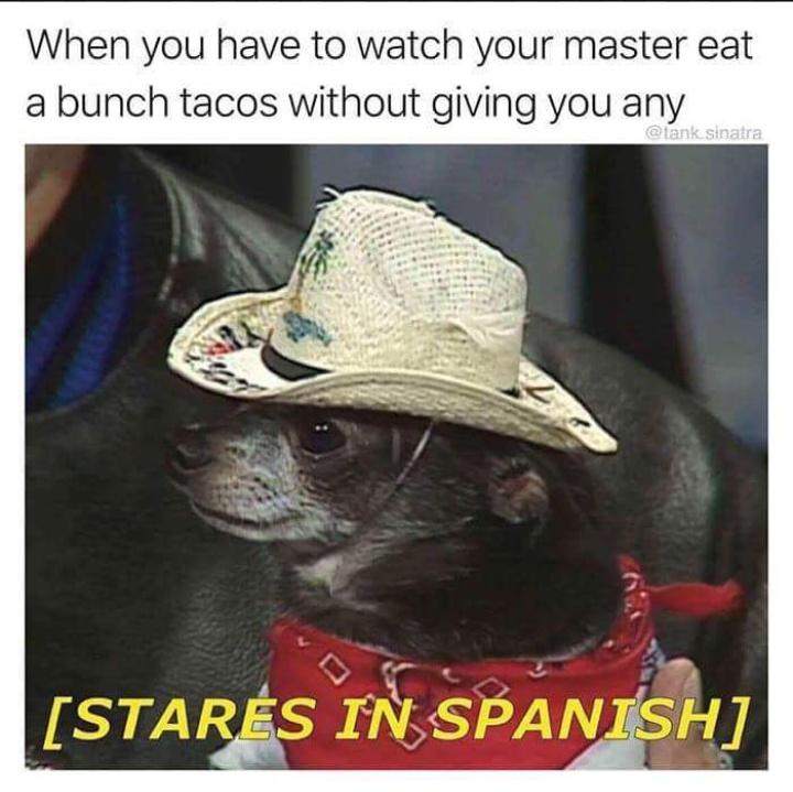 Butts - meme
