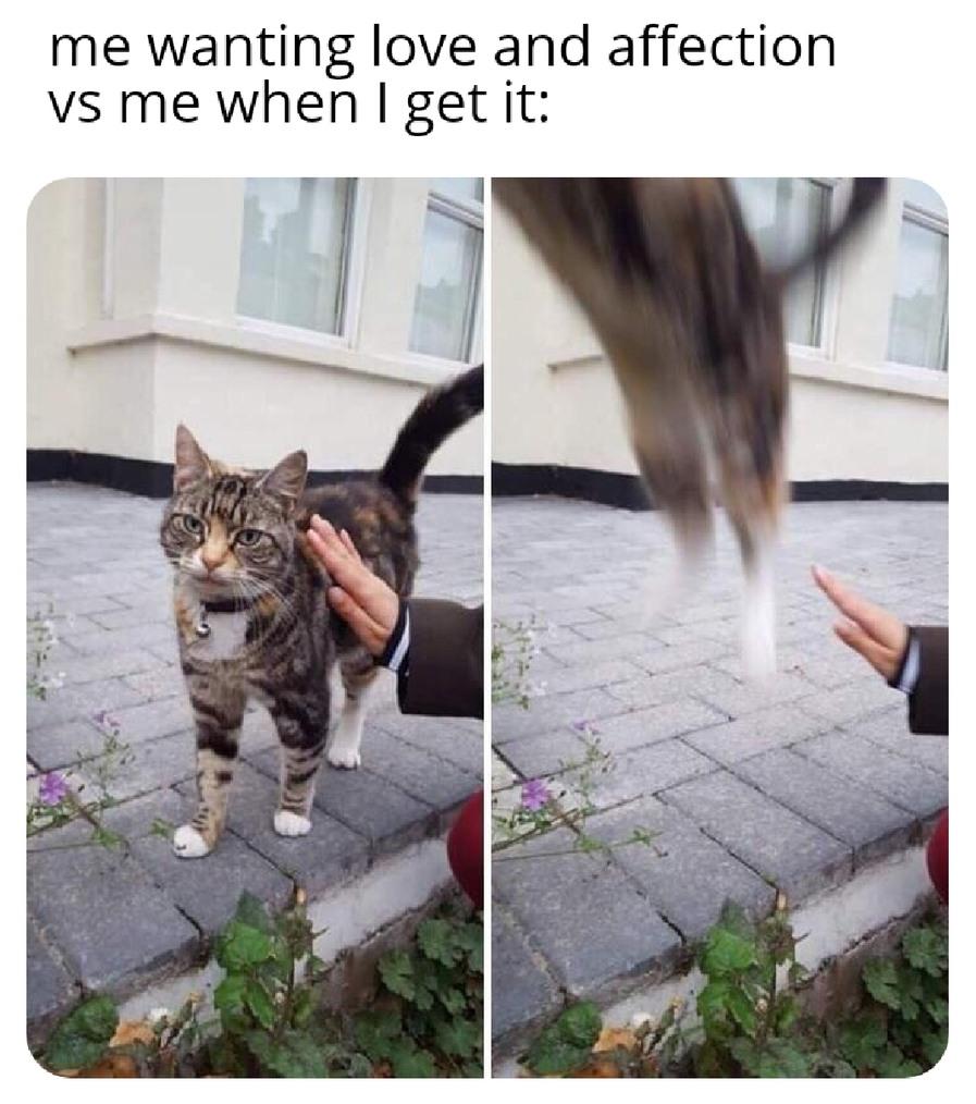 Hits close to home - meme