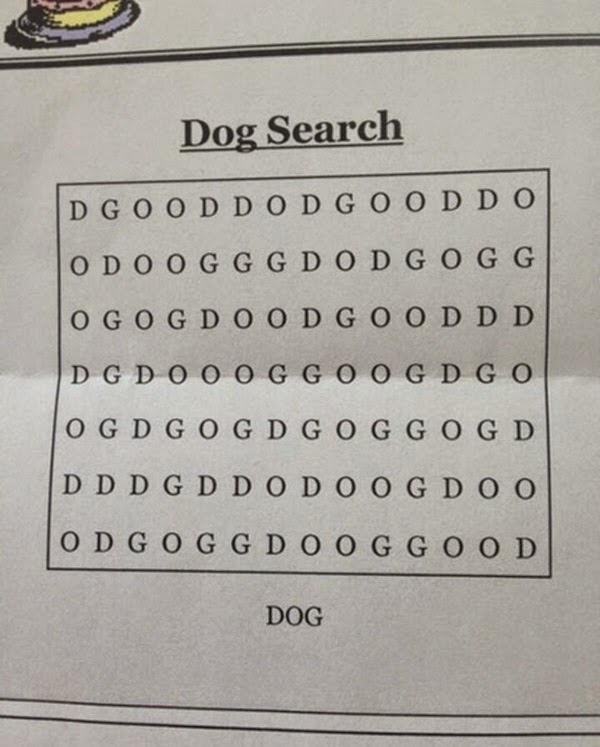 Duvido Você achar Dog... - meme