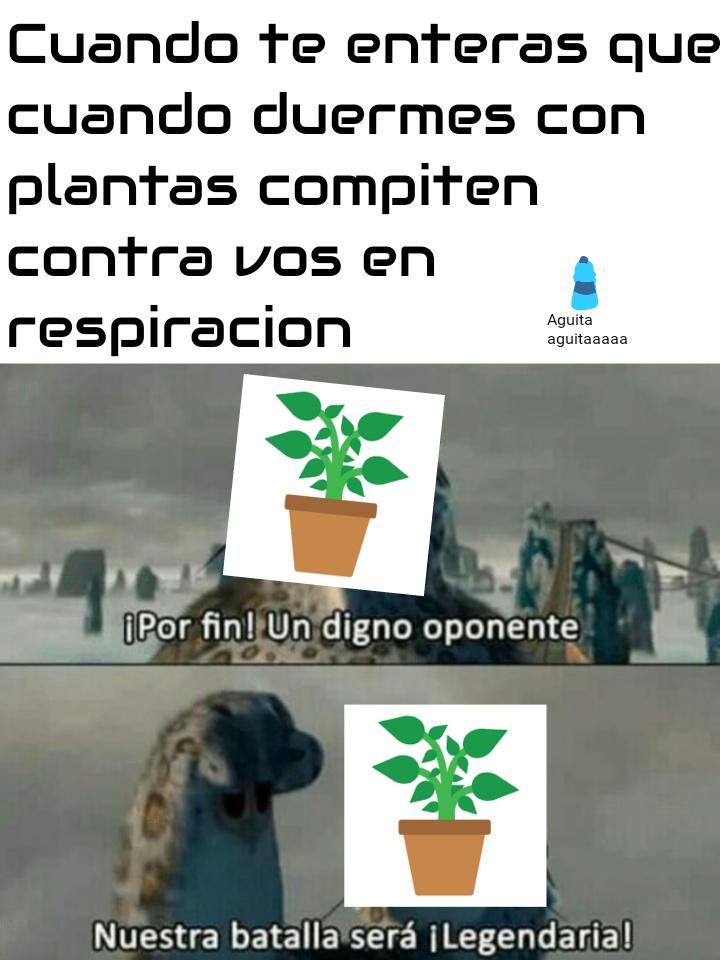 Ñeeeeerr - meme