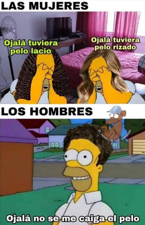 Homero con cabello - meme