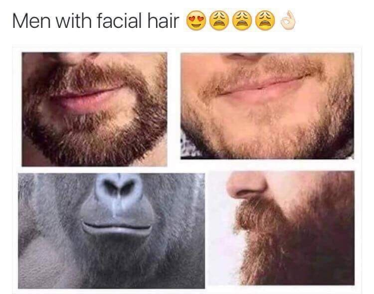 Men with facial hair - meme