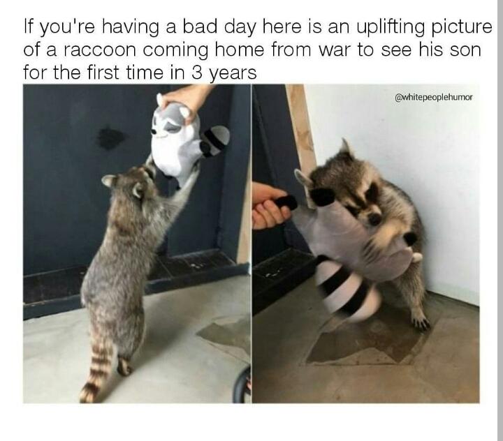 Heartwarming AF - meme