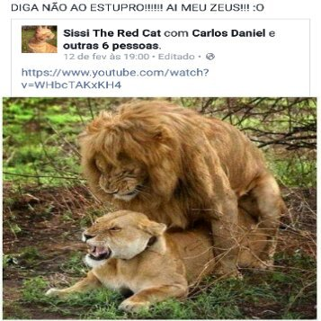 O TITULO FOI ESTUPRADO - meme