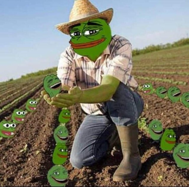 Illegal European meme farmer