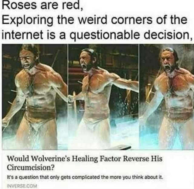Would Wolverine's healing factor reverse his circumcision? - meme