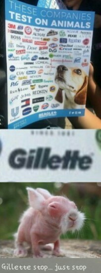 Gillette blades shaving Rats, looks like an old Chinese hag - meme