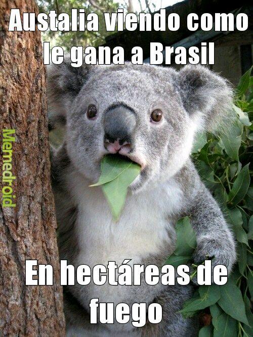 Australia VS Brasil - meme