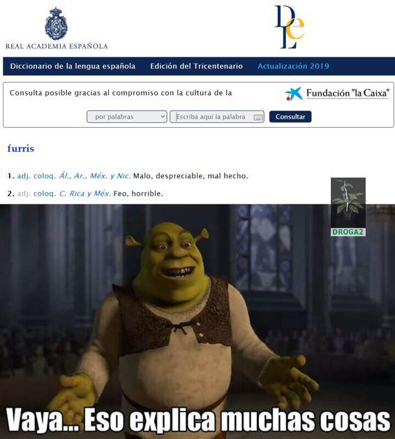 En verdad dice eso en la RAE - meme