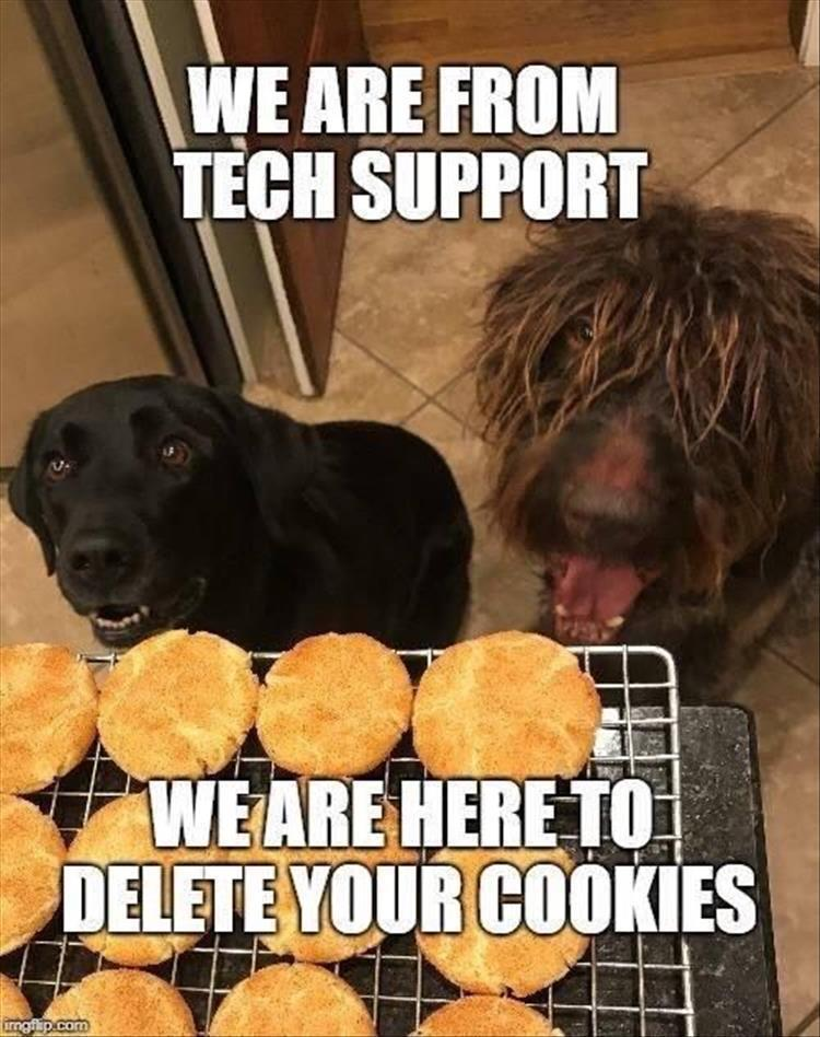 The dogs from tech support - meme