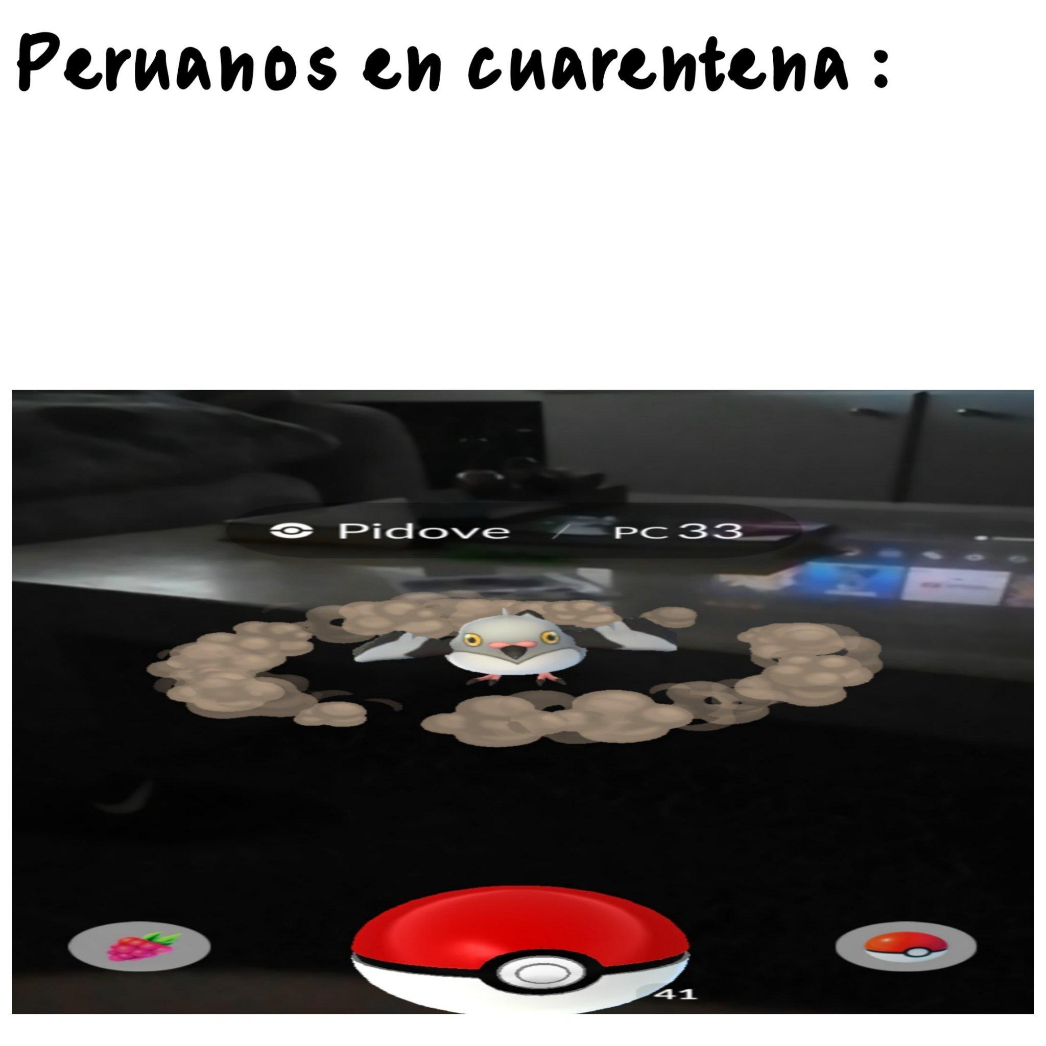 Pokepaloma - meme
