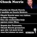 Chuck norris <3