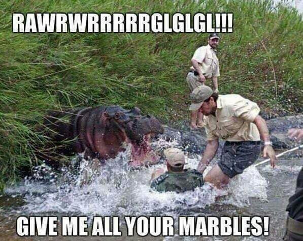 Hungry hungry hippos - meme