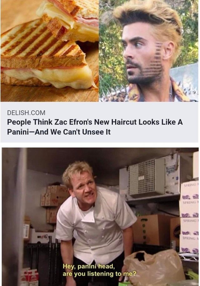 Zac Efron's new haircut looks like a Panini - meme
