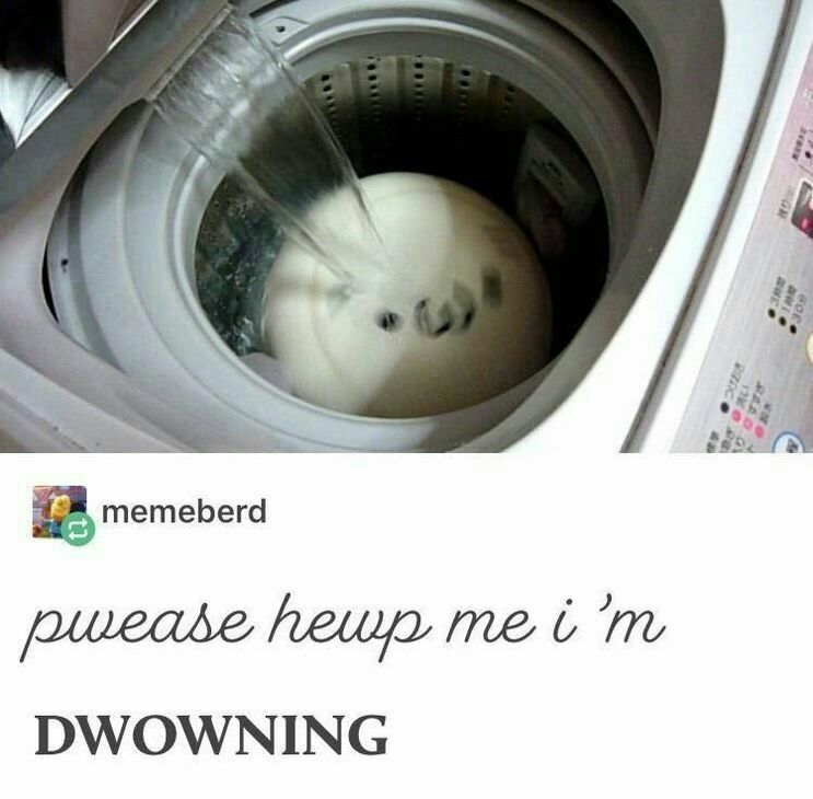 High brow humour - meme