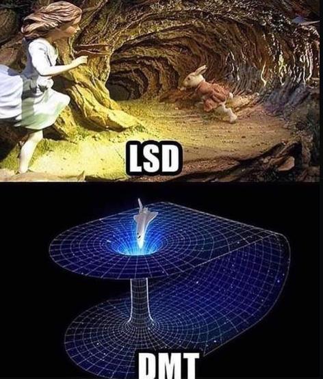 spiritual drug tingz - meme