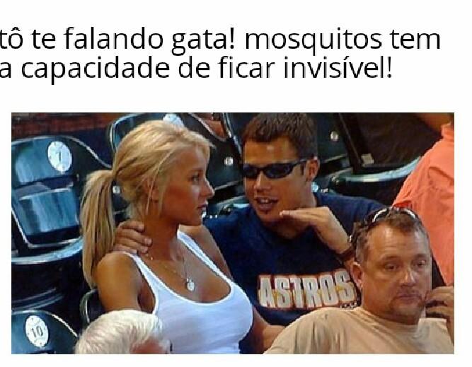 mosquitos me infernizam - meme