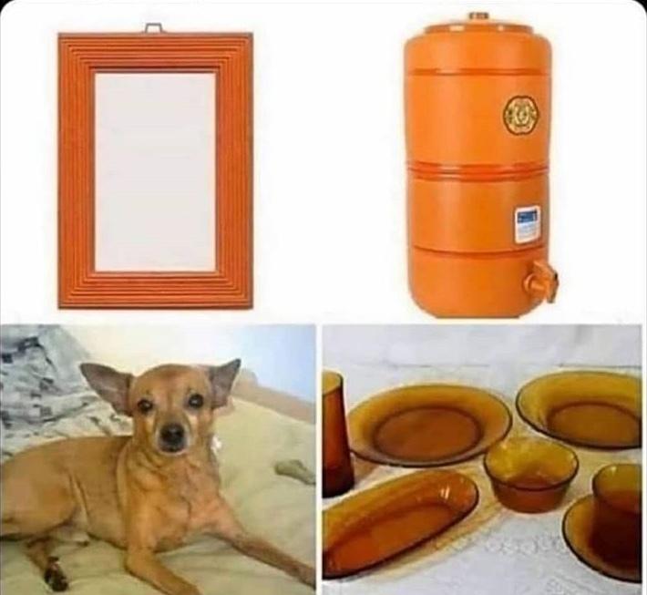 brazilian starter pack - meme