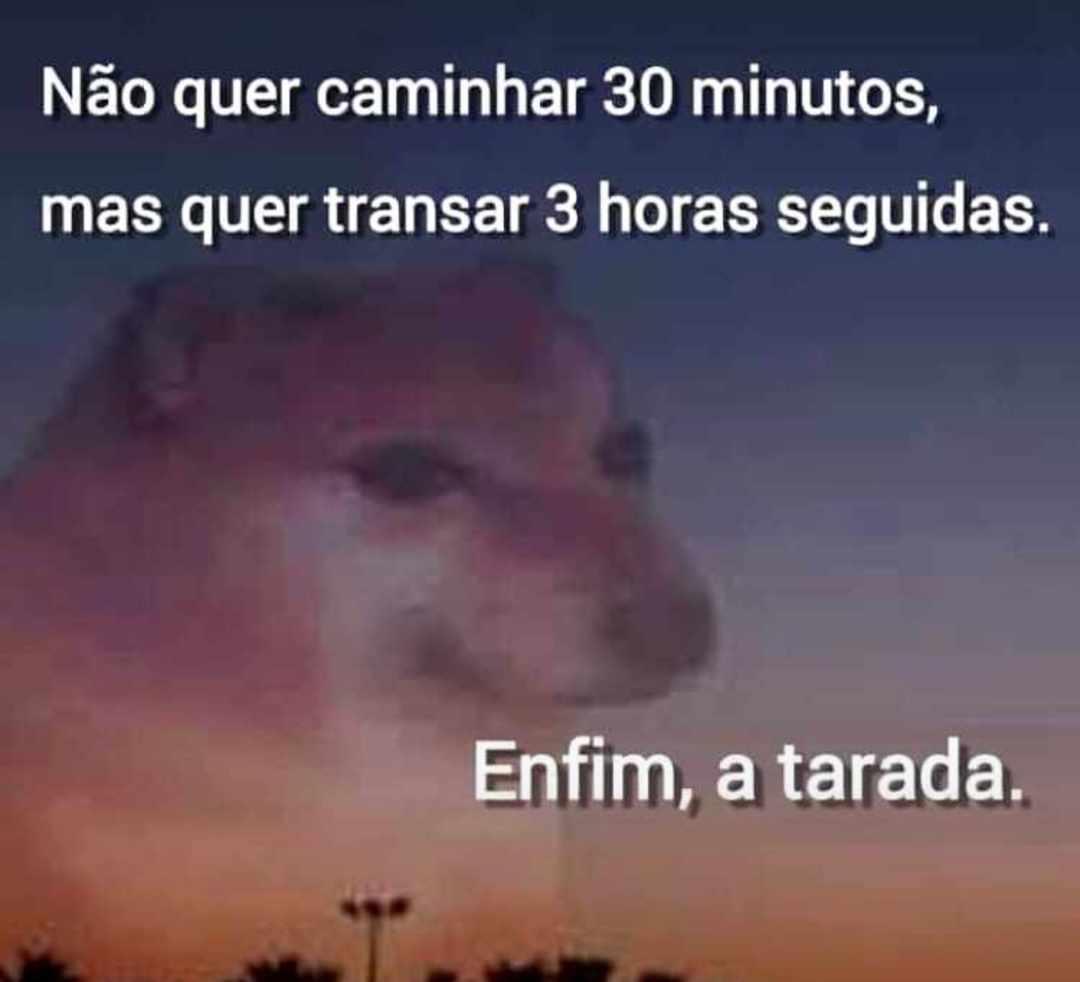 Foxy - meme