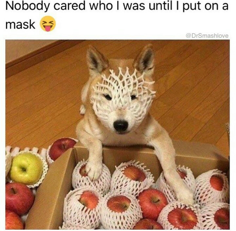 I am Natural Doggo - meme