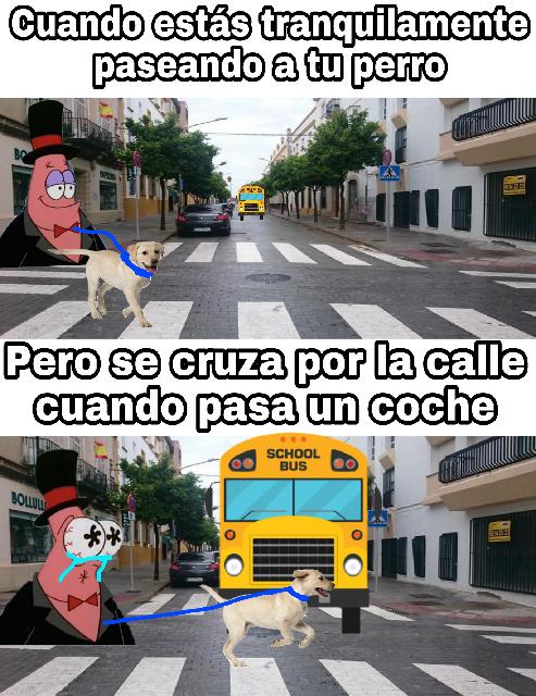 :,( sed - meme