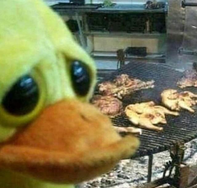 eet mor chickn - meme
