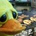 eet mor chickn