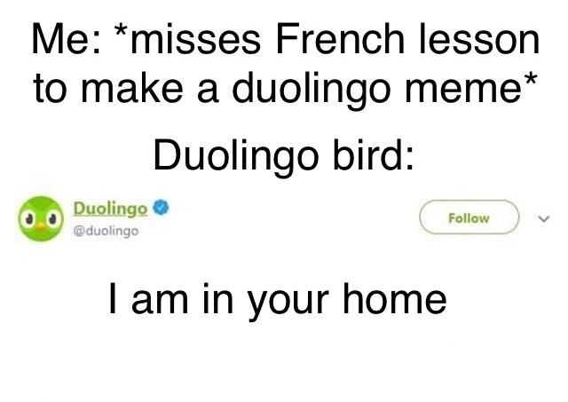 he's tweeting it get it cus he's a bird - meme
