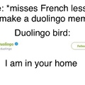 he's tweeting it get it cus he's a bird
